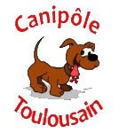 Association éducation canine